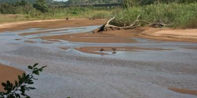 Mpanbanyoni River floodplain