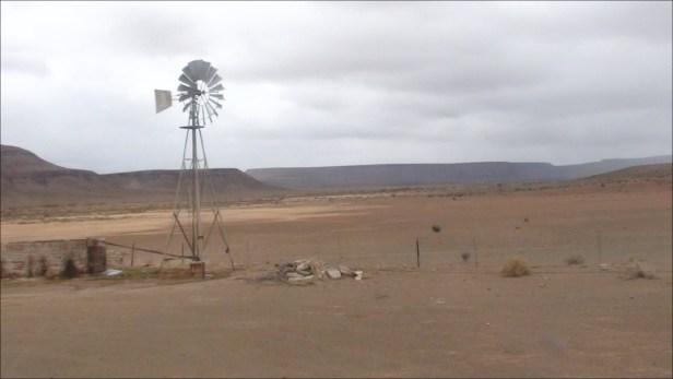 Namaqualand (25.08.2010)