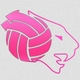 volley-club-gay-de-lyon-vcgl-logo