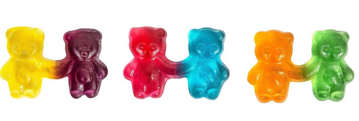bear-election--twinours