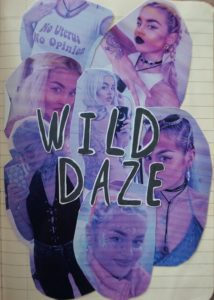 journal pagine celebrity crush wild daze dagboek idool