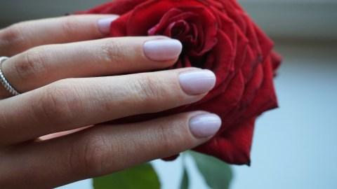 gellak roos nagels