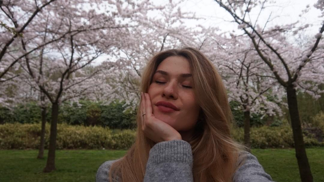 stilte voor de festival-storm japanse bloesempark Amterdamse Bos