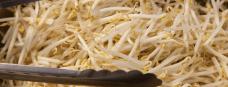 wok-groenten