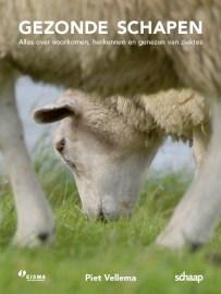 Cover_Gezonde_schapen