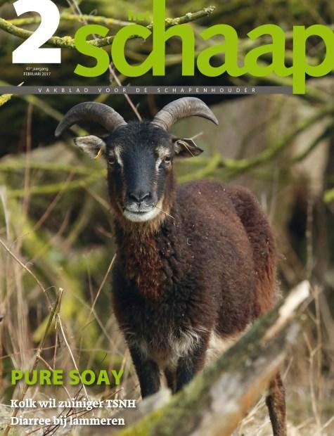 vakblad Het Schaap cover februari 2017