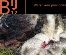 wolf dader slachtpartij