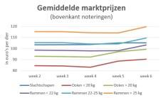 Grafiek met gemiddelde marktprijzen slachtschapen en slachtlammeren t/m week 6 2019