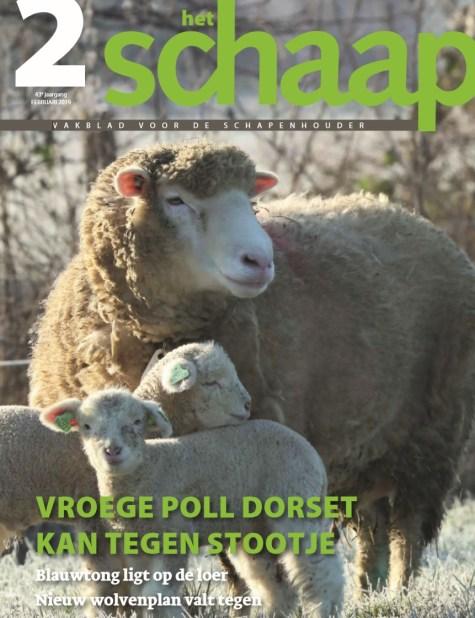 vakblad Het Schaap cover februari 2019