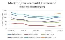 Grafiek met marktprijzen op veemarkt Purmerend week 36-44 2019