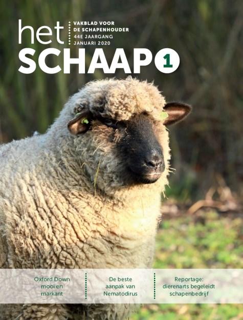 vakblad Het Schaap cover januari 2020