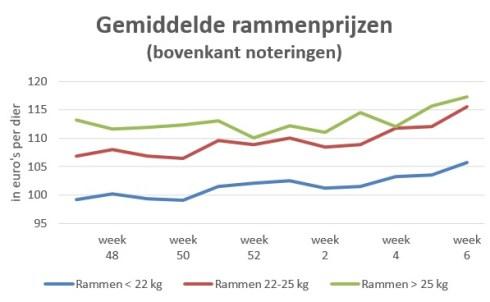 grafiek gemiddelde marktprijzen van rammen - week 6 2020