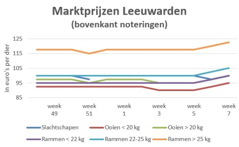 grafiek schapenprijzen veemarkt Leeuwarden week 7 2020