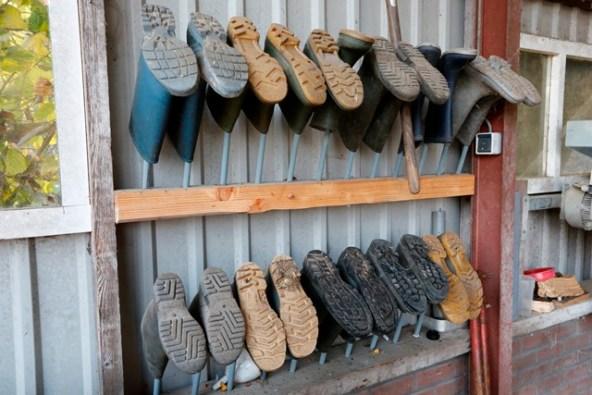 bedrijfslaarzen voor bezoekers