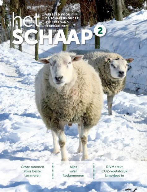 Cover Het Schaap 2021 editie 2