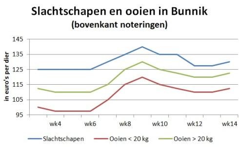 Marktprijzen van slachtschapen en ooien op veemarkt in Bunnik