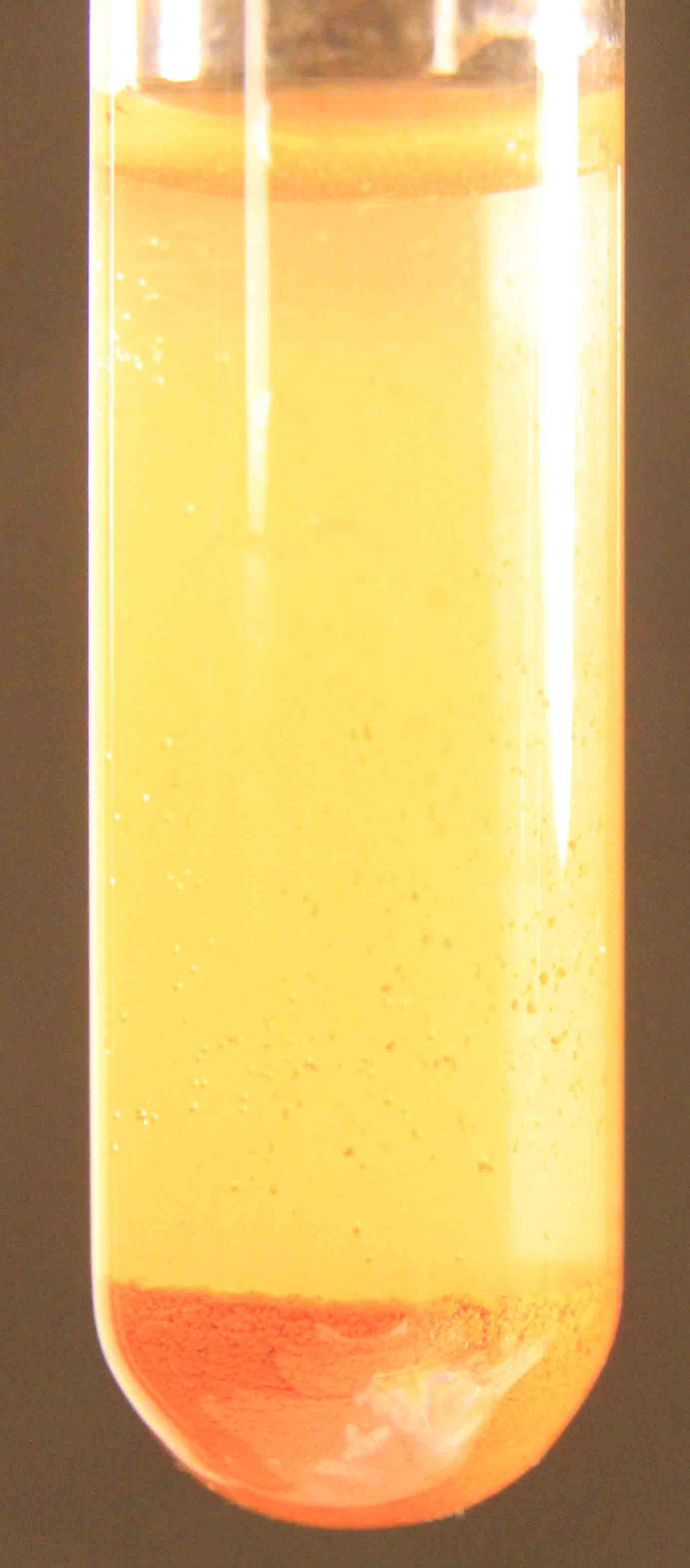 Untitled Document wwwheuremacom