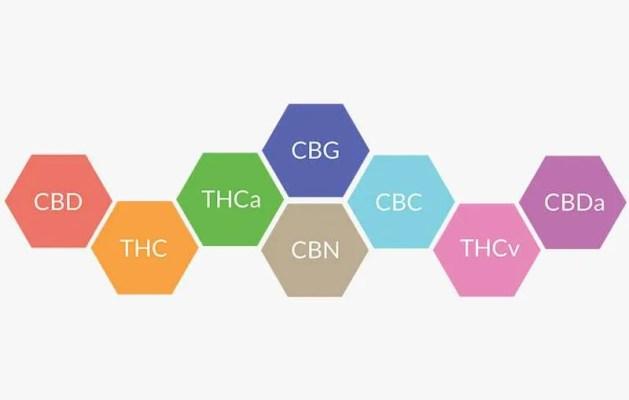 Le CBD : isolé ou en spectre complet ?