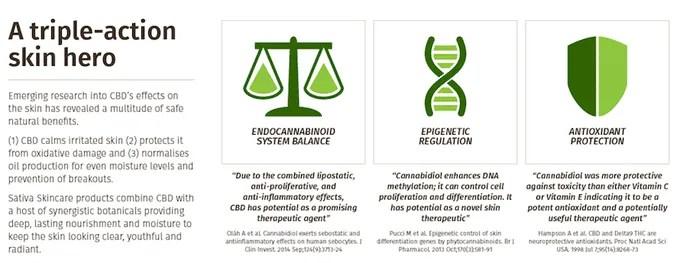 Le CBD et son action sur votre peau