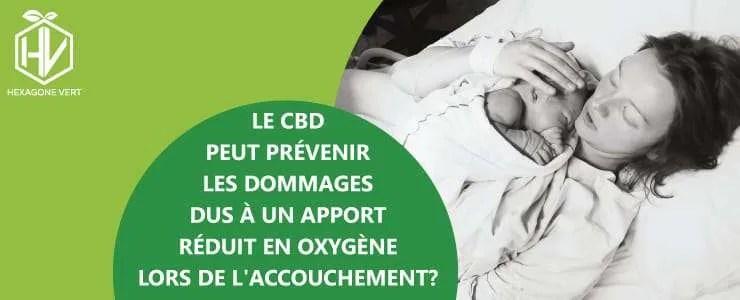 Le CBD peut prévenir les dommages dus à un apport réduit en oxygène lors de l'accouchement