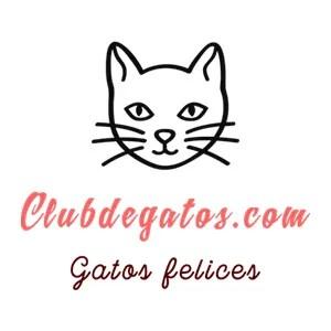 Club de Gatos