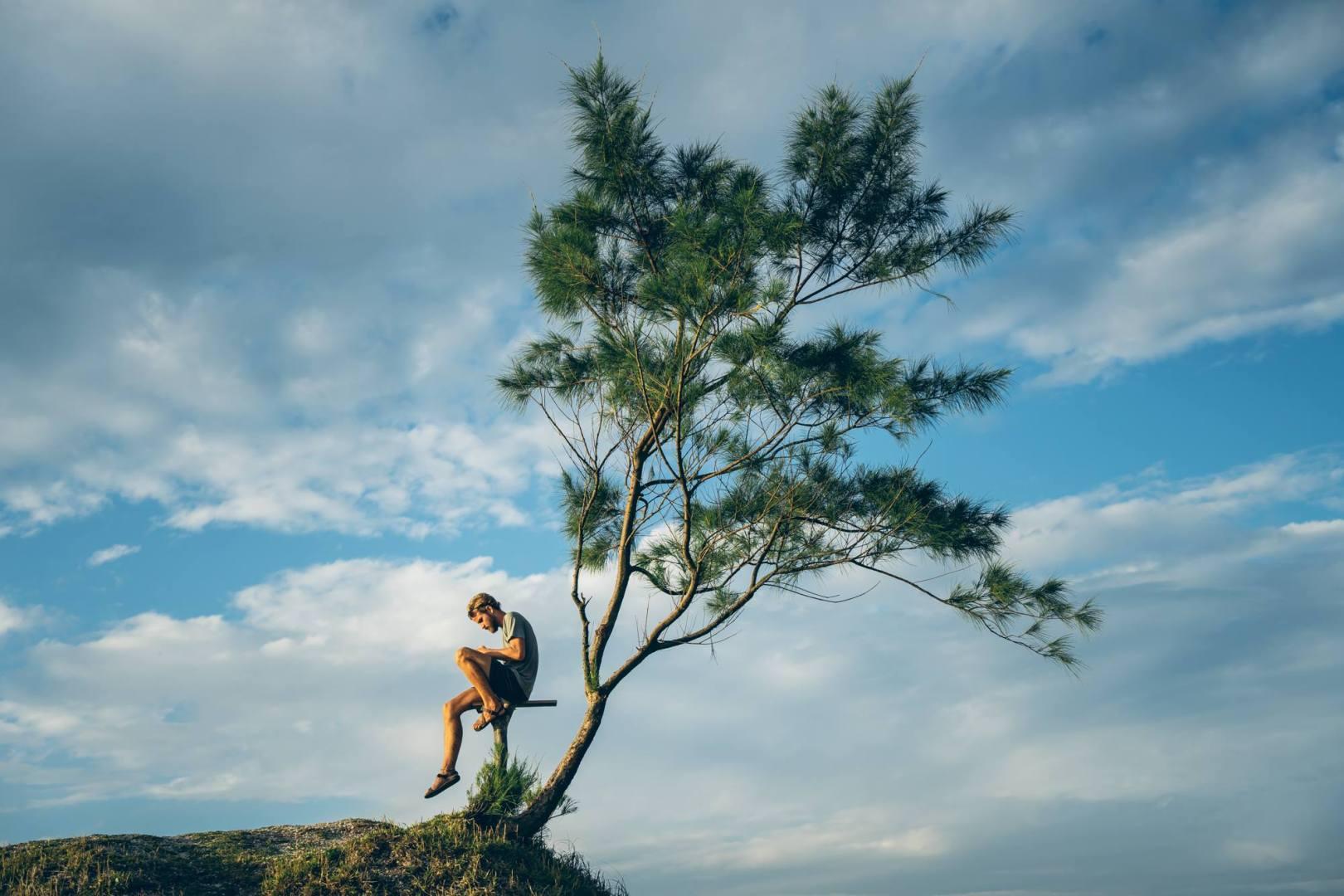 Martin fait la lecture à l'arbre