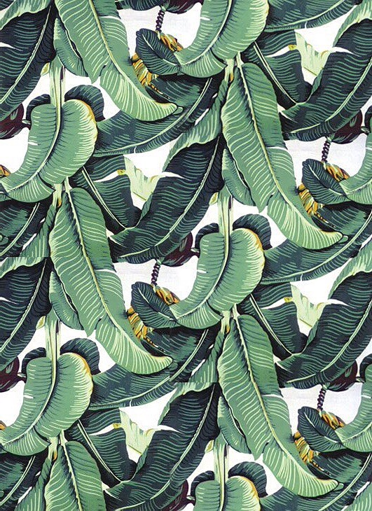 Palm Leaves Wallpaper Vintage Golden Girls What S On My Iphone Audio Heyclaire