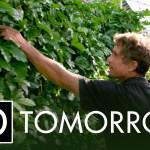 Please watch Tomorrow today
