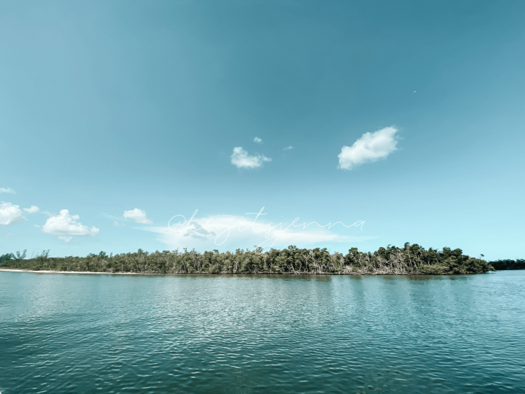 florida intracoastal waterways, marco island nature, boat rentals and things to do on marco island