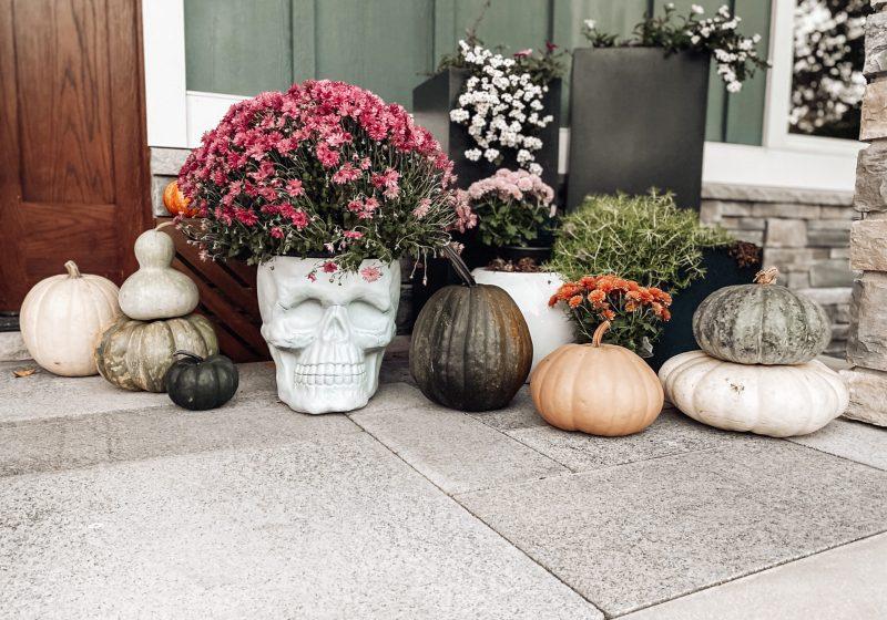 Festive Fall Home Decor Picks