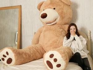 Ours en peluche géant dans la chambre