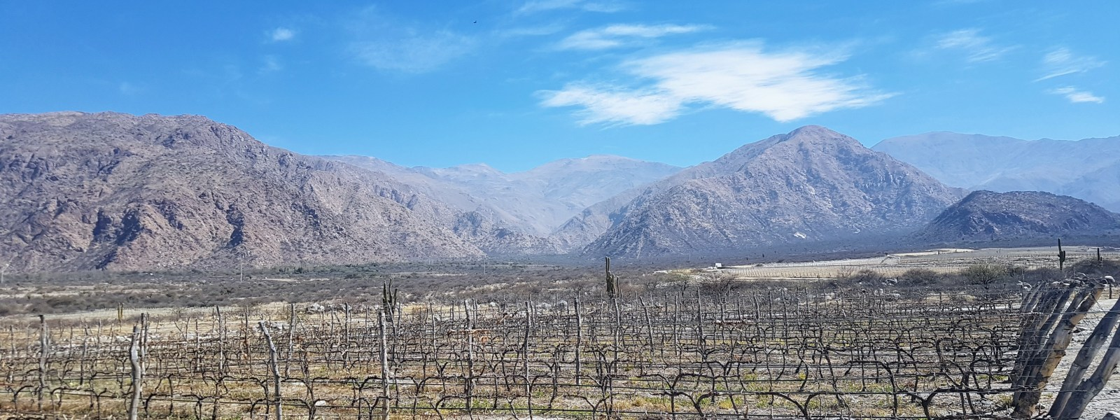Drinking Argentinian wines in Salta and Cafayate