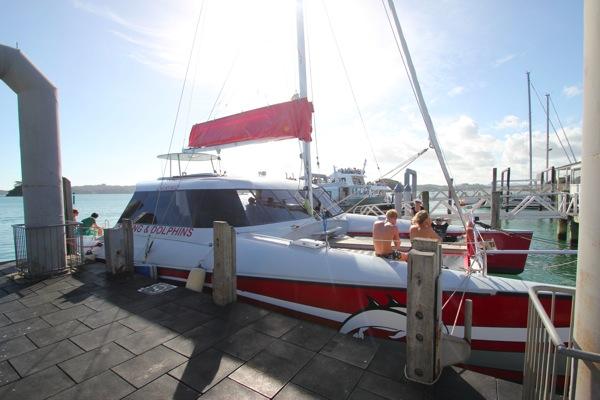 Carino Sailing