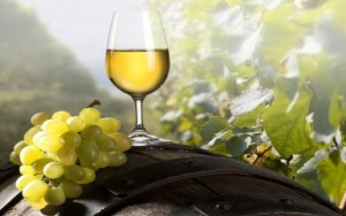 gatlinburg-smoky-mountain-wine-fest-heysmokies