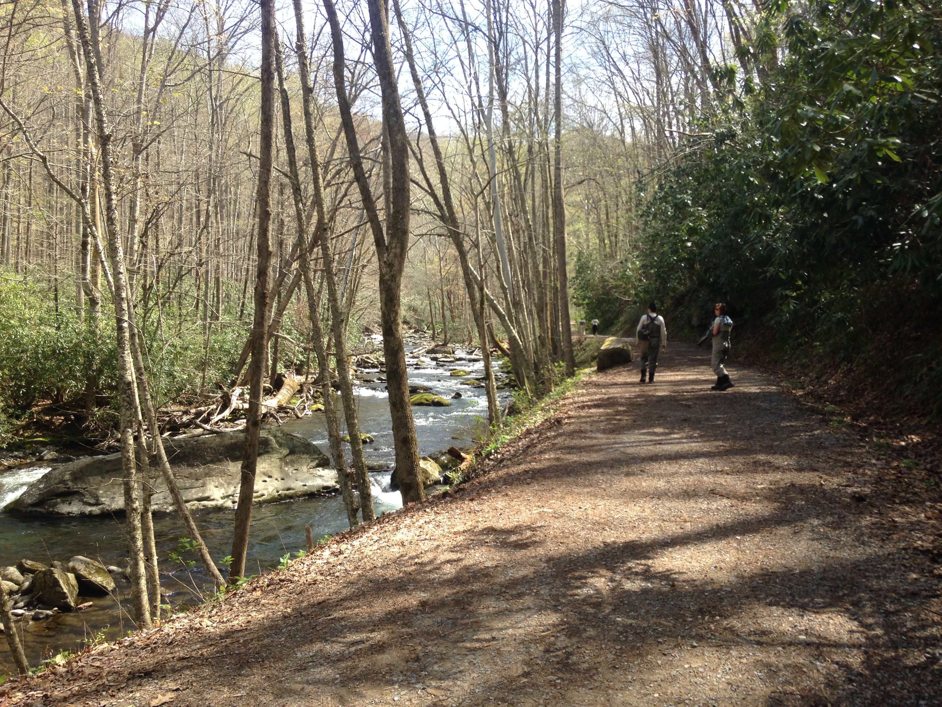 elkmont dating Fort hampton outfitters: just a great amazing kayak trip down the river - see 3 traveler reviews, 3 candid photos, and great deals for elkmont, al, at tripadvisor.