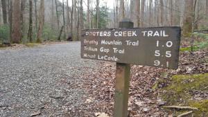 porters-creek-trail-heysmokies