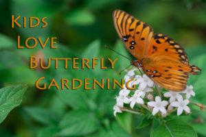 Master Gardeners butterfly gardening for kids!