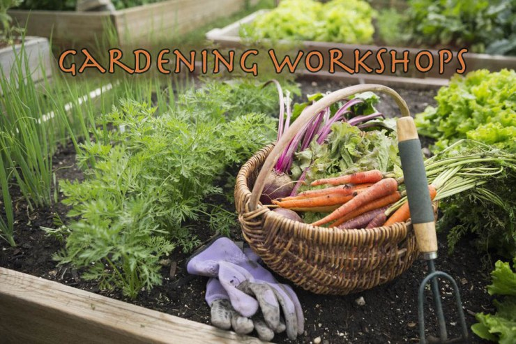 Gardening workshops scheduled.