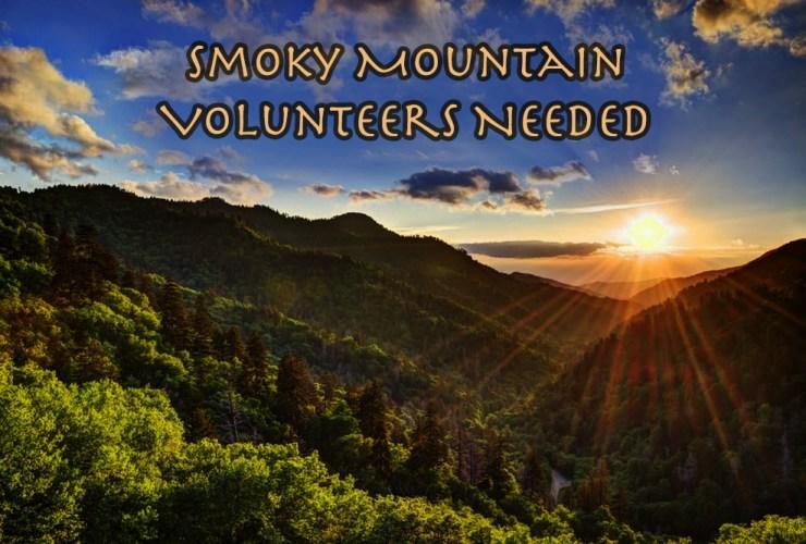 "Smoky Mountain ""adopt a plot"" program needs volunteers!"