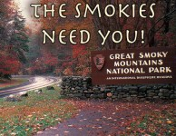 Join the fun and be a Smoky Mountain volunteer!
