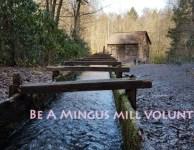 GSMNP Mingus Mill volunteers needed!