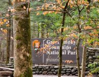 Smoky Mountain campgrounds and facilities close due to COVID - 19..