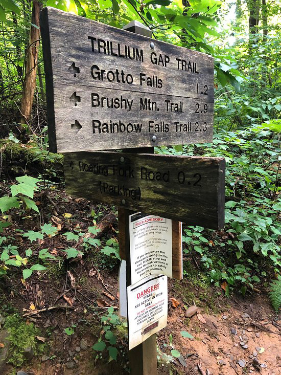 Trillium Gap trail opens after two year rehab.