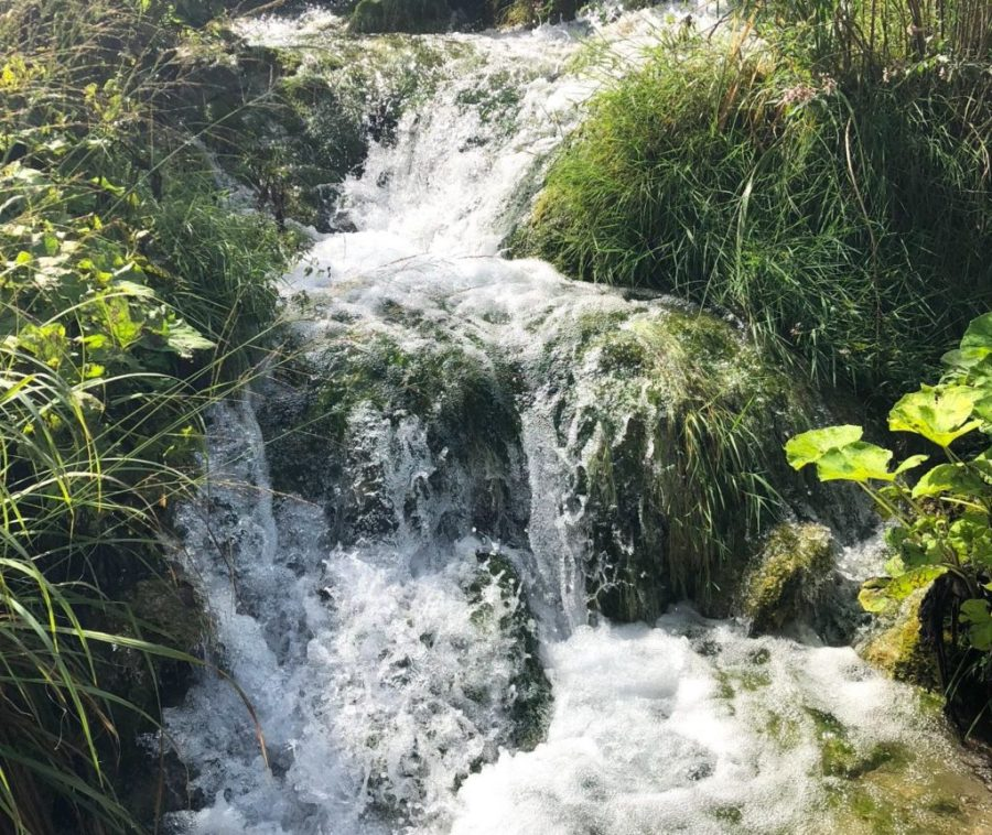 Babbling brook in Plitvice Lakes National Park, Croatia