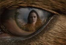Wolf Eye - Bella