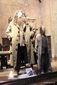 Harry Potter Studio Tour - HeyUGuys (20)
