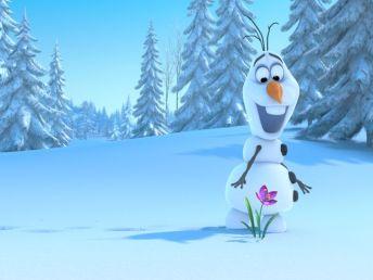 Olaf-in-Frozen