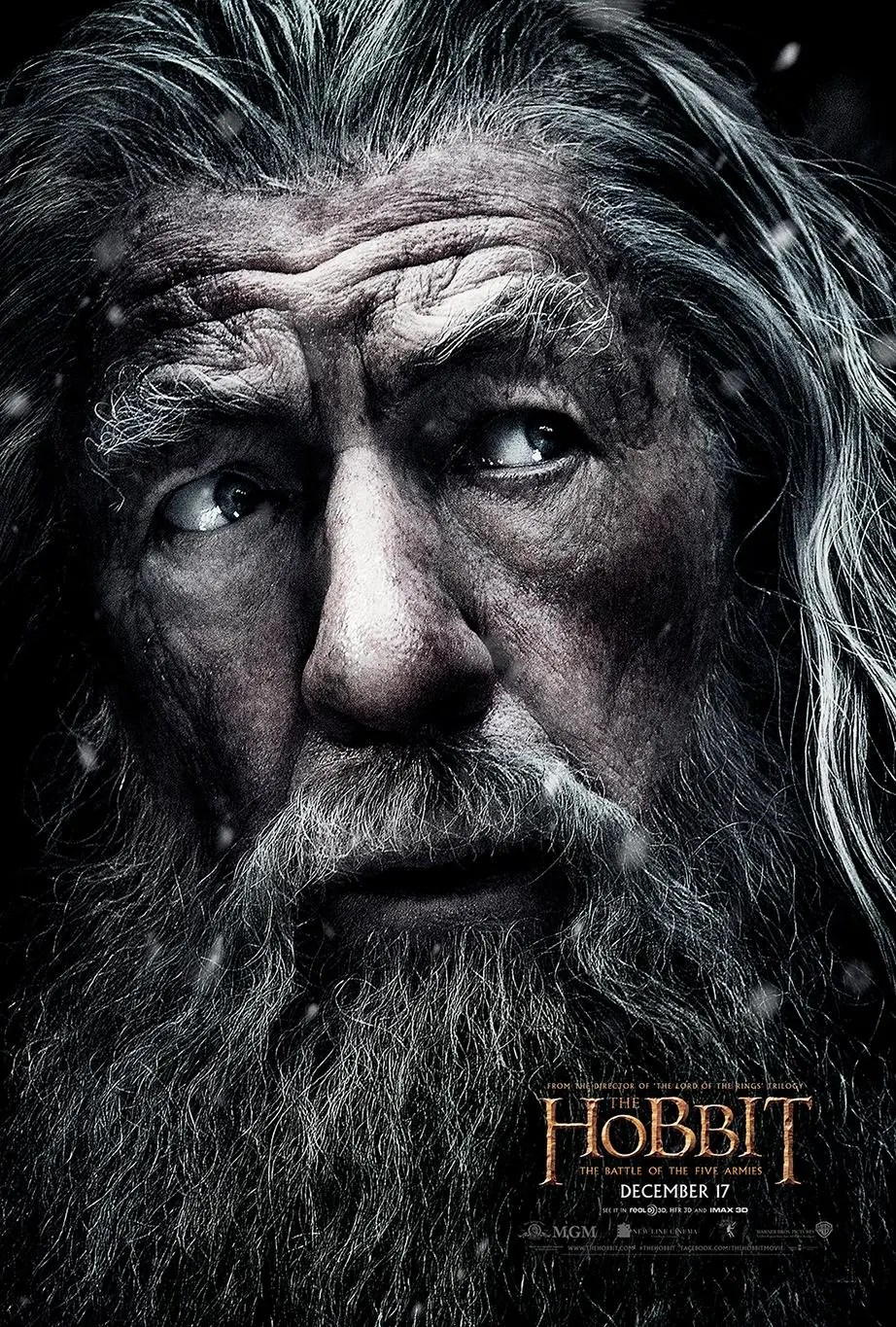 The Hobbit: The Battle of the Five Armies - Gandalf Poster