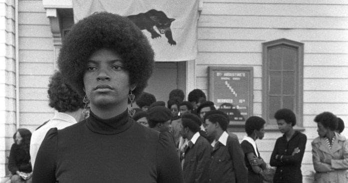 The Black Panthers Vanguard of the Revolution 1