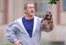 Mel Gibson and a Beaver!